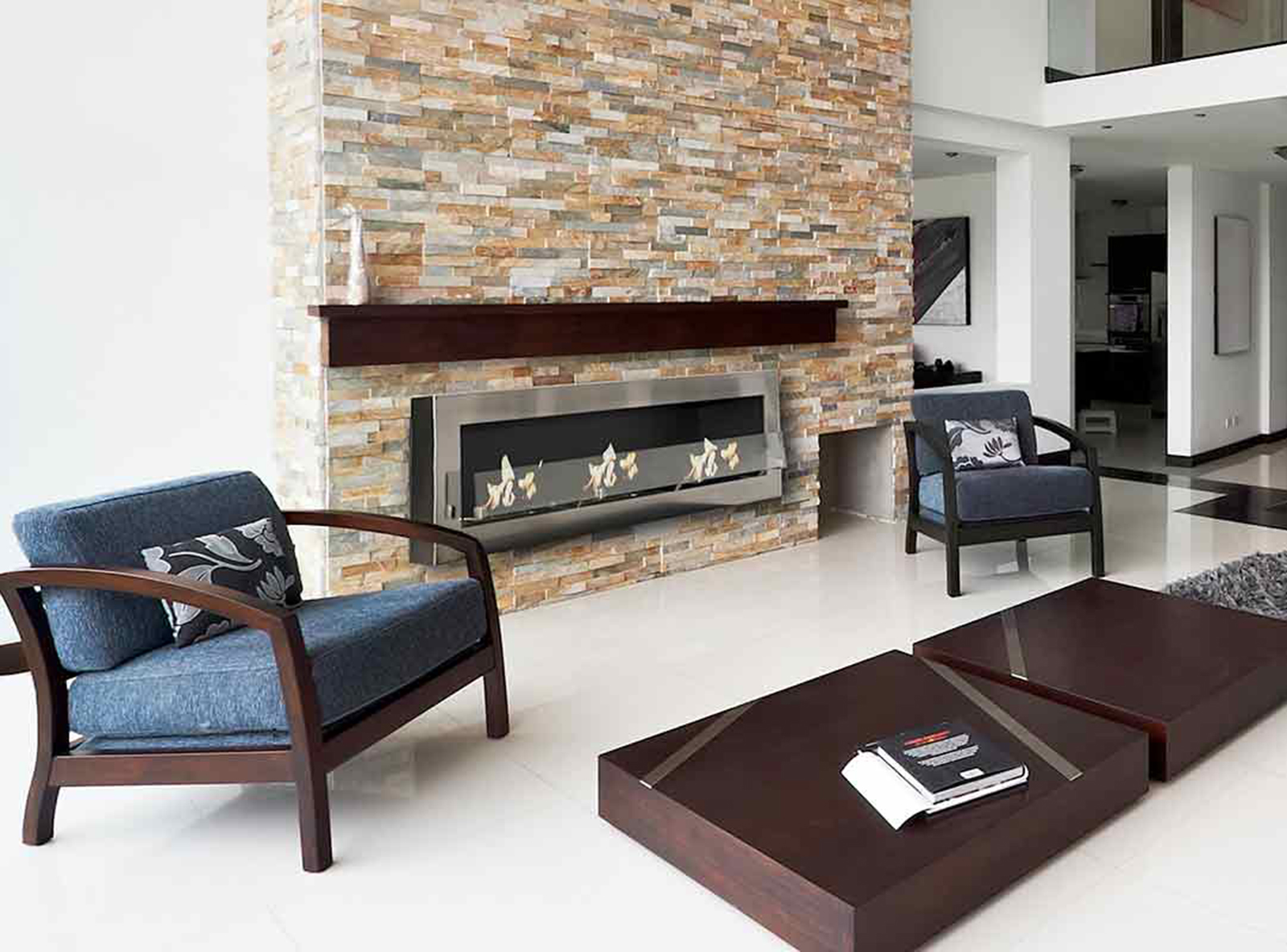 quelle nergie choisir chemin e bois gaz ou thanol. Black Bedroom Furniture Sets. Home Design Ideas
