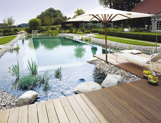 Piscine naturelle en 6 questions viving for Construction de piscine naturelle